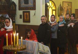 Успение Пресвятой Богородицы в приходе Св. Николая Сербского в Сантьяго, Чили.