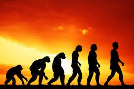 Еволуционизам и Православље