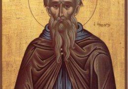 Свети преподобни Кириак Отшелник – Михољдан