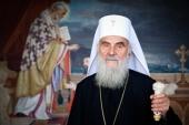Святейший Патриарх Ириней: «Сербский» Афон — вместе с канонической Церковью Украины