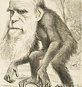 Критика учења теолога дарвиниста