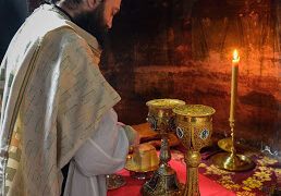 Епископ бачки др Иринеј: Свето Причешће – извор здравља или извор болести?