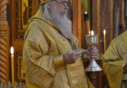 Посещение Епископом Иоанном Сантьяго, Чили