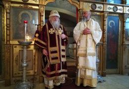 Aborto: la posición de la Iglesia Ortodoxa Rusa y de la Iglesia Serbia
